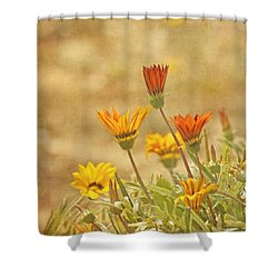 Here Comes The Sun Shower Curtain by Kim Hojnacki