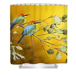 Here Comes The Sun - Rainbow Bee-eaters Shower Curtain