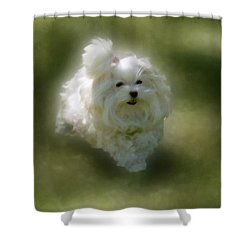 Here She Comes Shower Curtain by Lois Bryan