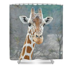 Shower Curtain featuring the photograph Here's Lookin' At You by Dyle   Warren