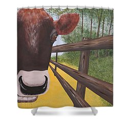 Here's Looking At Moo Shower Curtain by Tim Townsend
