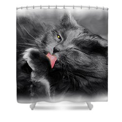 Here's Looking At You Shower Curtain by Joann Vitali