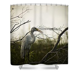 Heron At Dusk Shower Curtain