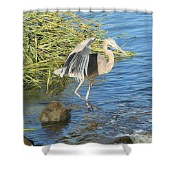 Heron Dance Shower Curtain by Karen Silvestri