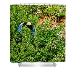 Heron Flies Over Oak Creek In Red Rock State Park Sedona Arizona Shower Curtain by Bob and Nadine Johnston