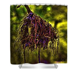 Shower Curtain featuring the photograph Heron Totem by Gary Holmes