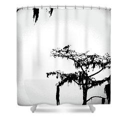 Shower Curtain featuring the digital art Herons by Lizi Beard-Ward