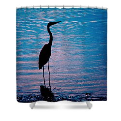 Herons Moment Shower Curtain by Karol Livote