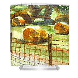 Hey Bales In The Afternoon Shower Curtain by Kip DeVore