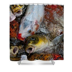Shower Curtain featuring the photograph Hey Whats Happening by Wilma  Birdwell