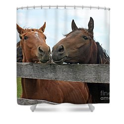 Hey You Come Here Shower Curtain by Debbie Hart