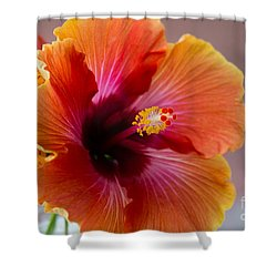 Hibiscus 3 Shower Curtain by Sally Simon