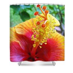 Hibiscus Antennae Shower Curtain