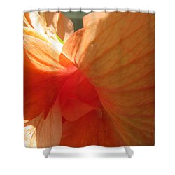 Hibiscus Butterfly Shower Curtain