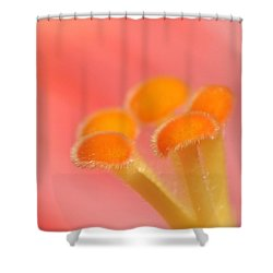 Shower Curtain featuring the photograph Hibiscus Center Macro by Chris Anderson