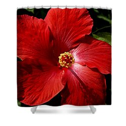 Hibiscus Landscape Shower Curtain