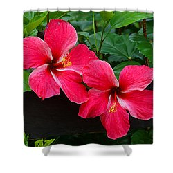 Hibiscus Portrait Shower Curtain