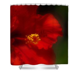 Shower Curtain featuring the photograph Hibiscus Softly 2 by Travis Burgess