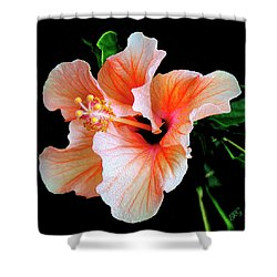 Hibiscus Spectacular Shower Curtain by Ben and Raisa Gertsberg
