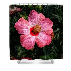 Hibiscus Sunset Shower Curtain