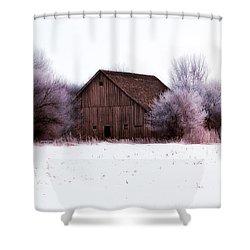 Hidden Barn Shower Curtain by Julie Hamilton