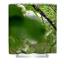 Hidden Bird White Shower Curtain by Susan Garren