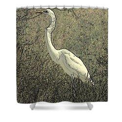 Hidden Egret Shower Curtain by Carol Groenen