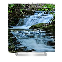Hidden Falls Shower Curtain by Julie Andel