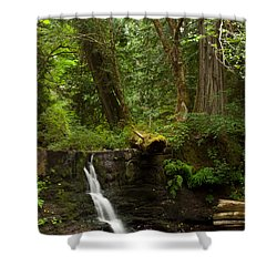 Hidden Gem Shower Curtain by Randy Hall