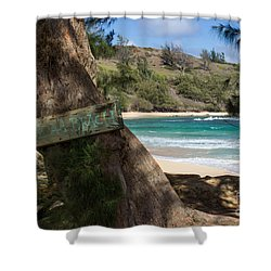 Hidden Gem Shower Curtain by Suzanne Luft