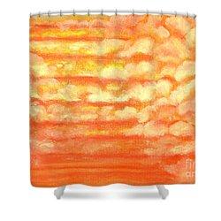 Hidden Step Shower Curtain