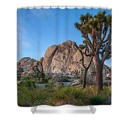 Hidden Valley Shower Curtain