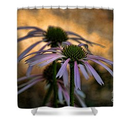 Shower Curtain featuring the photograph Hiding In The Shadows by Peggy Hughes