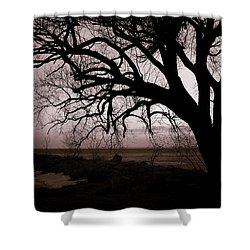 Shower Curtain featuring the photograph High Cliff Beauty by Lauren Radke
