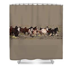 High Desert Horses Shower Curtain by Diane Bohna