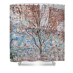 High Line Palimpsest Shower Curtain by Rona Black