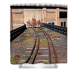 High Line Spur Shower Curtain by Rona Black