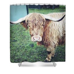 Highland Cow Shower Curtain by Les Cunliffe
