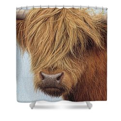 Highland Cow Painting Shower Curtain