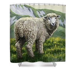 Highland Ewe Shower Curtain