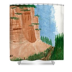 Highway Smile Shower Curtain