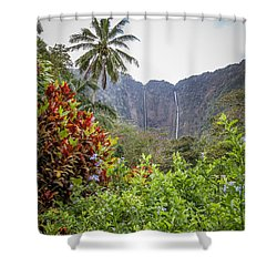 Hiilawe And Hakalaoa Falls Shower Curtain by Denise Bird
