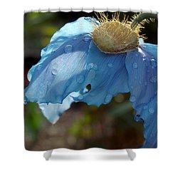 Blue Allure Shower Curtain