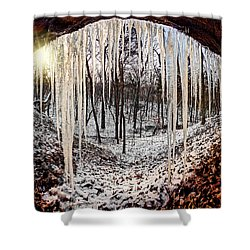 Hinding From Winter Shower Curtain