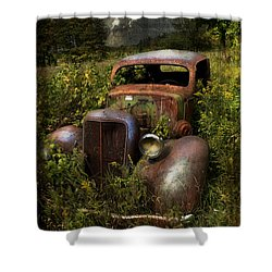Historical Journey Shower Curtain by Evie Carrier