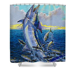 Hit And Miss Off0084 Shower Curtain by Carey Chen