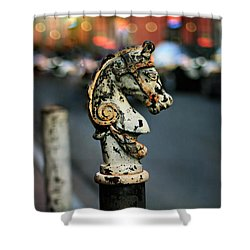 Hitching Post #1 Shower Curtain
