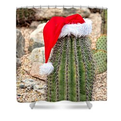 Shower Curtain featuring the photograph Ho Ho Ho Arizona Style by Dan McManus