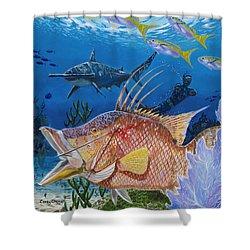 Hog Fish Spear Shower Curtain by Carey Chen
