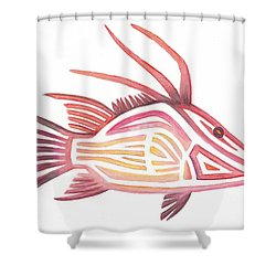 Hogfish Shower Curtain